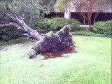 Hurricane Ike: Part College Station