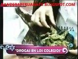 AMOR AMOR AMOR 14-07-2011 DROGAS EN LOS COLEGIOS