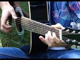 Take Me To Church- Hozier -Fingerstyle Guitar Cover