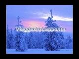 Finlandia - Lapponia Part 4 - Sled dog a Rovaniemi