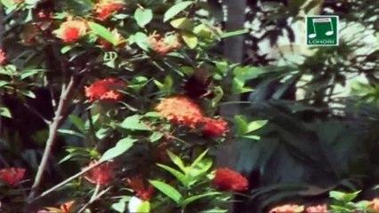 Bangladesher Dingamanik | Bengali Devotional Video | Pallab Ghosh | Lohori Audio | Bangla Geeti