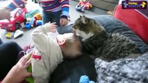Cute Cat And Baby Videos Compilation 2015   Cat Baby 2015   720p - Funny Baby Videos