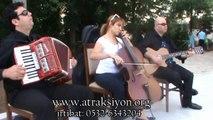 Music Group,trio,group, cello,guitar,accordion