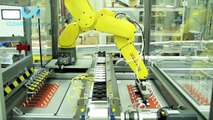 Automated Blister Sealing System with Three FANUC Robots for Load/Unload -- Clear Automation