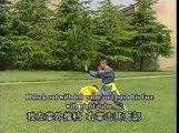 Shaolin chain hands close combat kung fu (lian shou duan da): combat methods