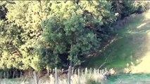 Les Bassets Bleus du Pont des Granges (30) dans la voie du Lièvre - Le 22 septembre 2013