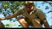 Steve Irwin and Komodo Dragons