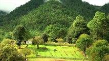 Día Internacional de los Bosques 2015 - Los Bosques y el Cambio Climático