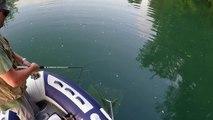 Pike fishing #a few smal pikes from last days @ ribolov ščuke reka Krka