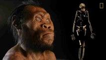 Homo naledi, una nueva especie de homo con rasgos de Australopithecus
