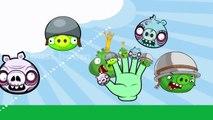 Angry Birds Bad piggies   Angry Birds Bad piggies Finger Family Nursery Rhyme