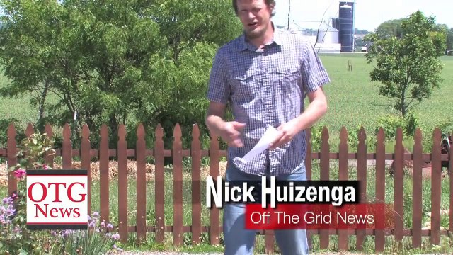 All Natural Bug Spray Recipe That REALLY WORKS! - Off The Grid News