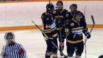 Waterloo Warriors vs. Laurier Golden Hawks, Men's Hockey Highlights (Oct. 11, 2012)