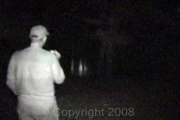 alien in the woods
