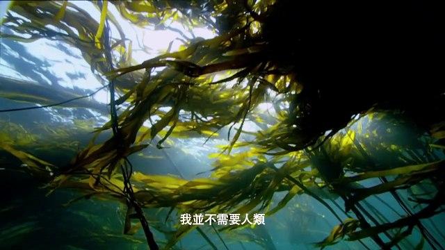 Nature Is Speaking: Julia Roberts is Mother Nature - 大自然在說話: 茱莉亞羅拔絲聲演「大自然」 | 保護國際基金會