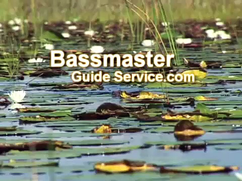 South Florida Bass Fishing 101