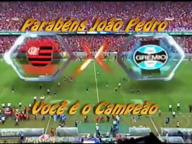 FLAMENGO HEXA CAMPEÃO BRASILEIRO 2009 - 8º ANIVERSÁRIO DE JOÃO PEDRO.