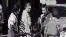 Tom Petty   Free Fallin' Tribute to Yojimbo 1961