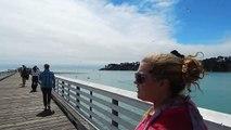 Whale watching: A day at the San Simeon pier, San Simeon, California