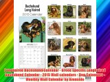Longhaired Dachshund Calendar - Breed Specific Longhaired Dachshund Calendar - 2015 Wall calendars