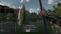Fishing Planet - Gros Poissons Chat - Tuto FR -
