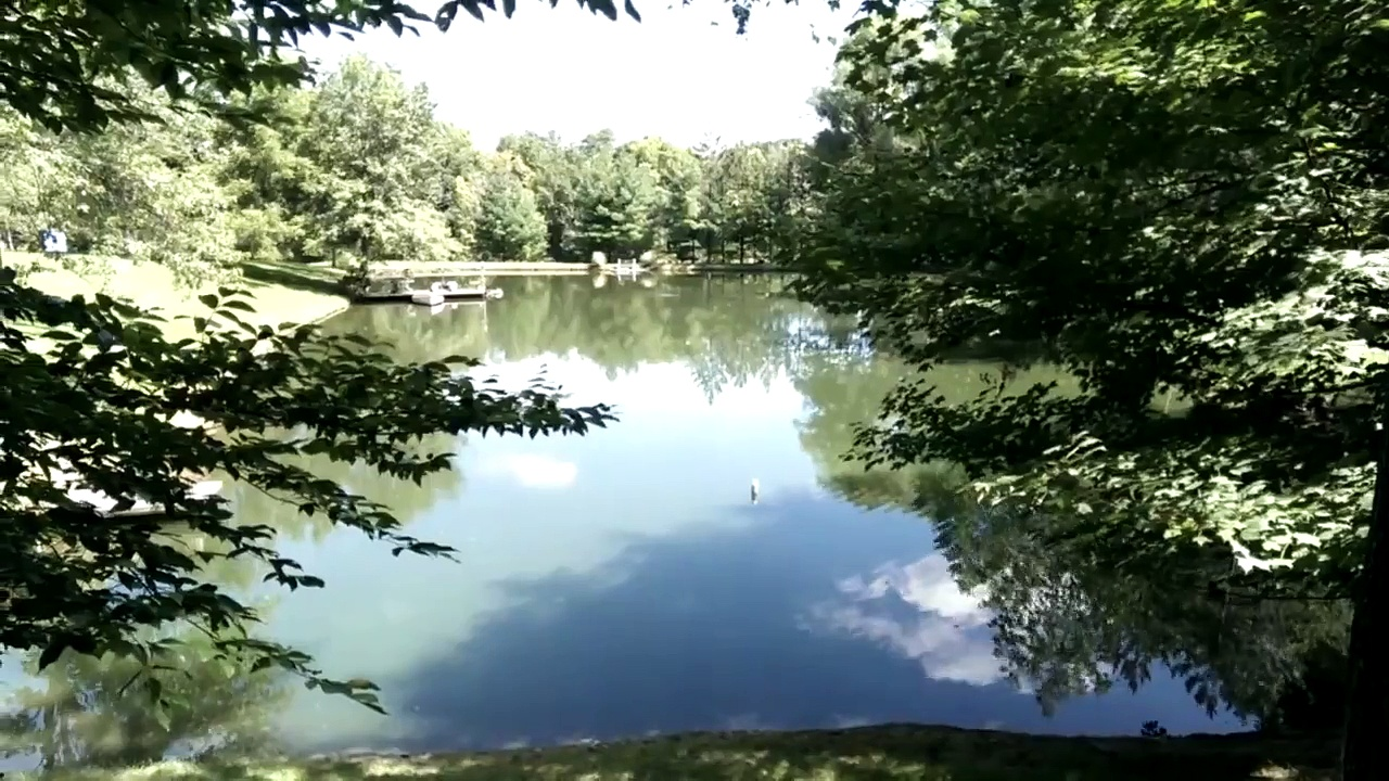 Neighbors pond