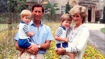 Princess Diana and Prince William & Kate Middleton