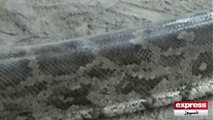 Anaconda Lahore