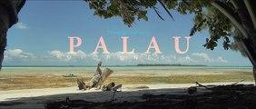Palau, Micronesia Through Our Lens
