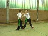 M-Kung-Fu - Bang Bo applications 7 -- Northern Seven Star Praying Mantis Kung Fu