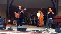 The Little Red Rooster Blues Band- Malt Liquor & Fruit Wine
