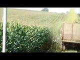 SILAGE WITH CHAINSAW100 | Farming Simulator 17 | Oakfield Farm
