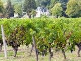 Dans les coulisses de Vignes, vins et randos : Chinon
