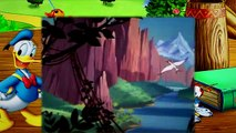 14  Donald Duck Clown of the Jungle 1947