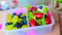 BACK TO SCHOOL: Breakfast & Lunch Ideas!