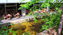 A Day in Kyoto, Japan | Golden Week Vlog