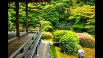 JAPANESE ROCK GARDEN in Kyoto, JAPAN  京都の石庭