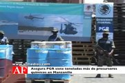 Asegura PGR siete toneladas más de precursores químicos en Manzanillo