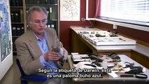 3-5 01 El genio de Charles Darwin-Richard Dawkins- La vida, Darwin y todas las cosas - subtitulado