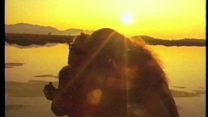 The Roller Blade Seven - Scott Shaw Zen Filmmaking