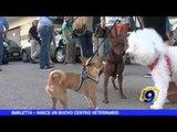 BARLETTA   Nasce un nuovo centro veterinario