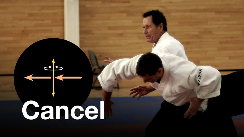 "Aikido: ""Cancelling"". Christian Tissier Shihan"
