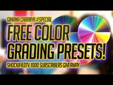 [FREE DOWNLOAD] COLOR GRADING PRESETS FOR AFTER EFFECTS!