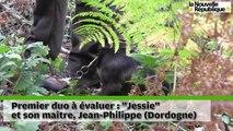 VIDEO.  Sur les traces des chiens de sang à Bommiers (Indre)