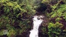 Poursuite de cascades en Drone
