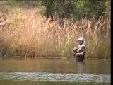 peche : black bass au fouet