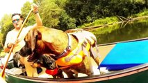 Tallapoosa River Overnight Canoe Trip