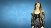 Automobile Insurance Quotes Comparison - Liability And Comprehensive