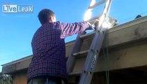My Dog Climbing a Ladder onto a Roof