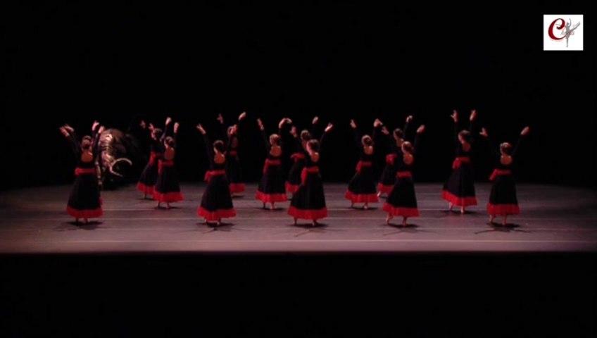 Les Chaussons Rouges - Choréa Danse 2015